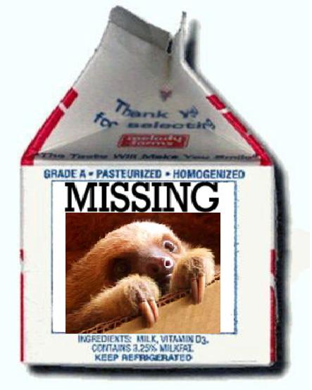 missingsloth